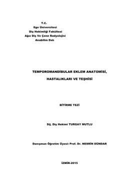 temporomandibular eklem anatomisi, hastalıkları ve teşhisi
