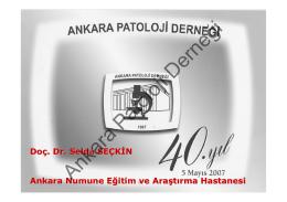 Derneğimizin 40. yılı, Doç.Dr.Selda Seçkin`in sunumu