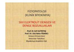+ 2 - Ankara Üniversitesi Veteriner Fakültesi