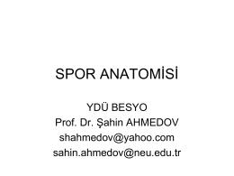Anatomi-1 - Cyprus Integrative Medicine