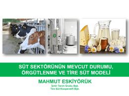 Süt Sektörünün Mevcut Durumu, Örgütlenme ve Tire Süt Modeli