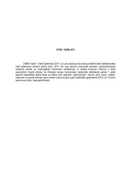 OTEL TADİLATI DHMİ Vakıf / Vakıf İşletmesi 2011 yılı yaz