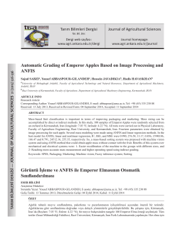 Automatic Grading of Emperor Apples Based on Image Processing