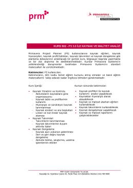 KURS 602 - P3 3.0 İLE KAYNAK VE MALİYET ANALİZİ