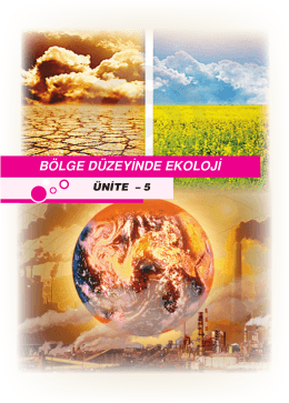 ekoloji ve çevre kirliliği