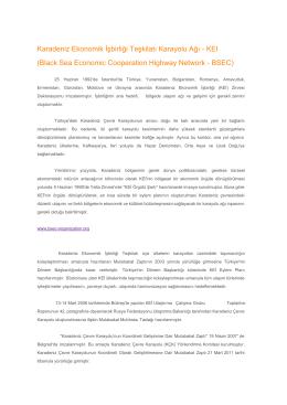 Karadeniz Ekonomik İşbirliği Teşkilatı Karayolu Ağı KEI (Black Sea