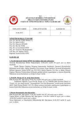 16.06.2015 Tarihli 513 sayılı karar