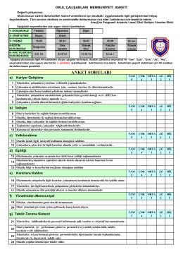 Çalışanlar Memnuniyet Anketi - Araç Çok Programlı Anadolu Lisesi