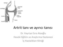 Doç. Dr. Esra Ataoğlu