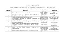 MetLab I ve III deney grupları deney tarihleri