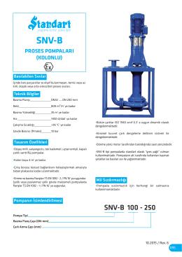 SNV-B - Atık Su ve Proses Pompaları ( Kolunlu)