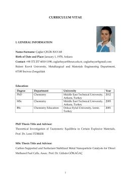 CV - Bülent Ecevit Üniversitesi – Metalurji ve Malzeme Mühendisliği