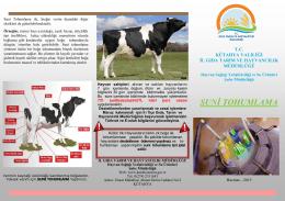 tohumlama lifleti - Kütahya İl Gıda Tarım ve Hayvancılık Müdürlüğü