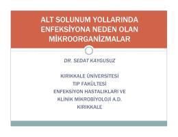 dr. sedat kaygusuz - Türk Dahili ve Cerrahi Yoğun Bakım Derneği