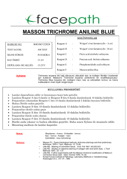 MASSON TRICHROME ANILINE BLUE