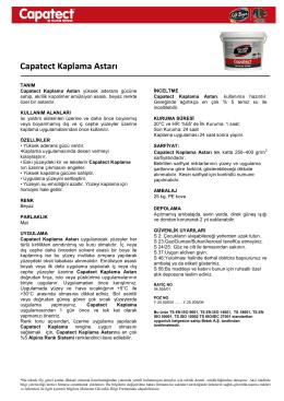 Capatect Kaplama Astarı