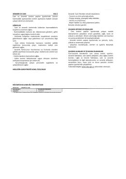 ÇEŞME RAM SERAMİK VE CAM YGS-2 Cam ve Seramik üretimi
