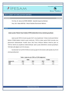 2015 şubat ayı enflasyon raporu