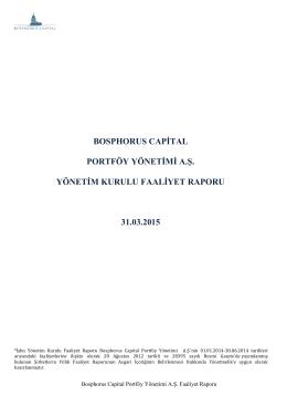 KAP YK Faaliyet Raporu 20150331