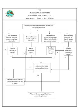 Ödenek Aktarma İş Akış Şeması