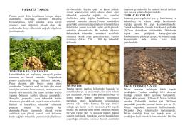 patates tarımı - Kütahya İl Gıda Tarım ve Hayvancılık Müdürlüğü