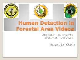 Human Detection in Forestal Area Videos