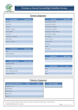 Üretim ve Enerji Verimliliği Fizibilite Formu