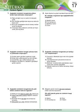 5.HAFTA TESTLERİNİN TAMAMINI ve CEVAP ANAHTARLARINI