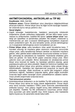 ANTİMİTOKONDRİAL ANTİKORLAR ve TİP M2