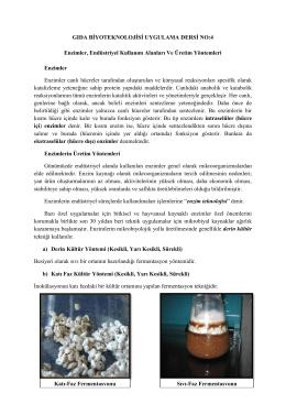 Enzimler, Endüstriyel Kullanım Alanları Ve Üretim Yöntemleri