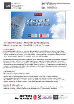 Hacettepe Üniversitesi – Micro MBA Sertifika Programı (Hacettepe