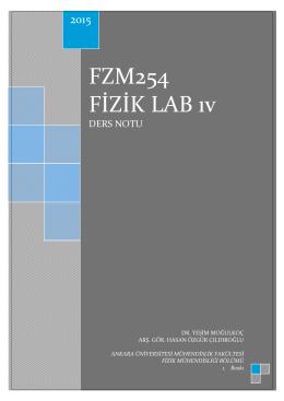 FZM254_28.2.15_sudalgaları_mikrodalga