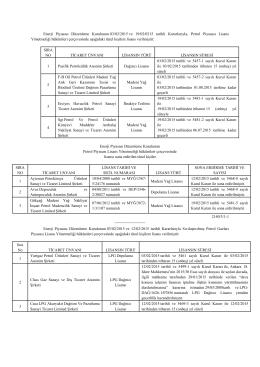 Enerji Piyasası Düzenleme Kurulunun 03/02/2015 ve 19