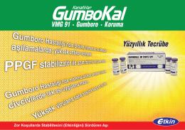 Gumboro - Etkin İlaç