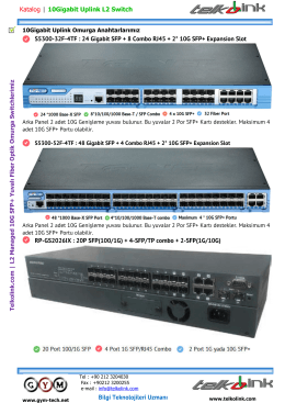 10G Uplink L2 Switchlerimiz