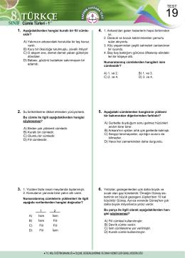 Türkçe Test 19
