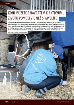 Koni můžete s návratem K aKtivnímu životu pomoci