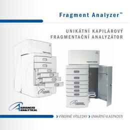 Fragment analyser