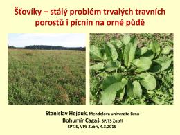 Šťovíky—stálý problém trvalých travních porostů i pícnin na