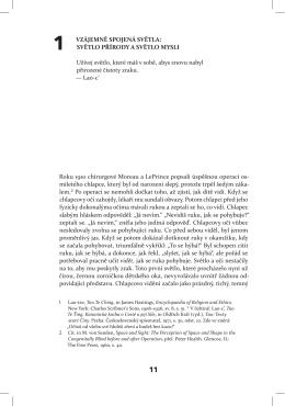 Celý text ukázky v pdf