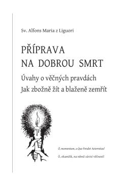 Stažení 1. přílohy ve formátu pdf