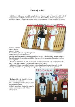 Ústecký pohár - Kobra Kladno