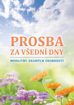 Náhled brožurky. - Brněnská tisková misie