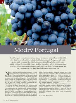 Modrý Portugal - VOC Modré hory