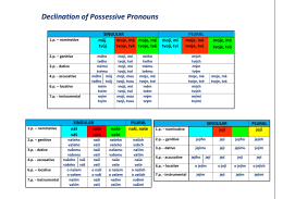 Declination of Possessive Pronouns