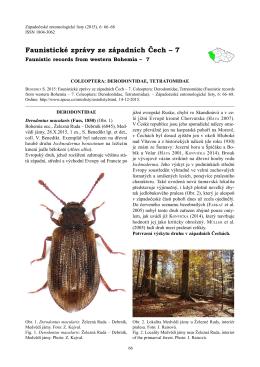 Faunistické zprávy ze západních Čech – 7. Coleoptera