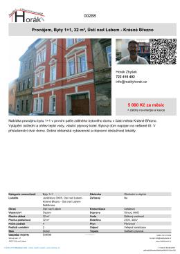 Pronájem, Byty 1+1, 32 m², Ústí nad Labem