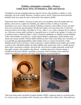 Žehlička, dalekohled a odznáčky z Pionýra