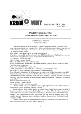 časopis č.6 - příloha/14-15