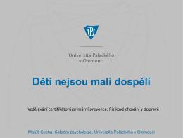 (Vzdělávání certifikátorů primární prevence, Praha, 2015, pdf).